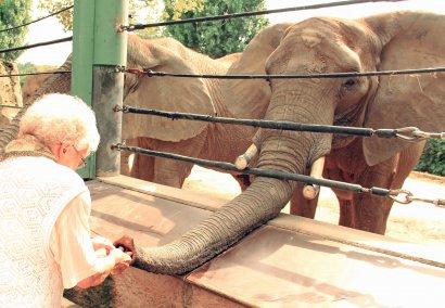 Zoo Duisburg ist erster demenzfreundlicher Zoo NRWs
