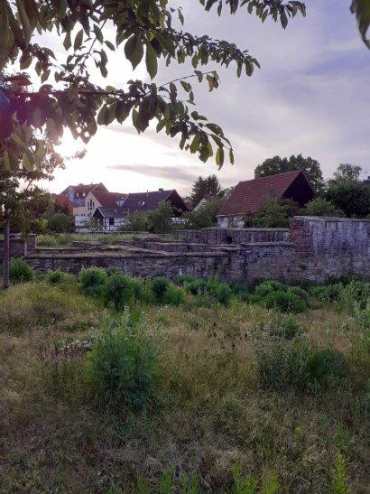Haus Crange (Bodendenkmal)