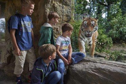Ferien im Zoo in Gelsenkirchen