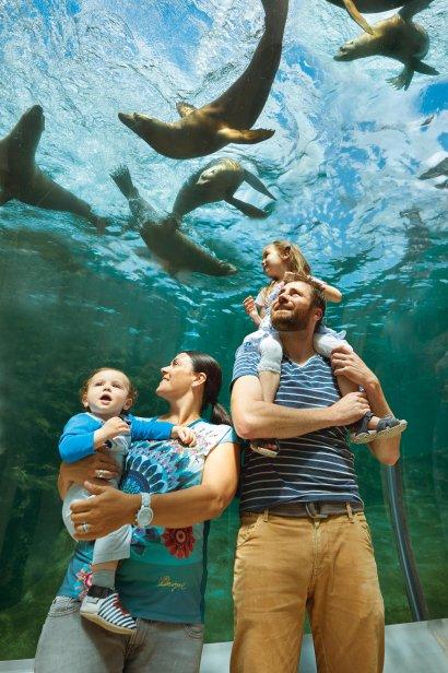 ZOOM bester Zoo in Deutschland